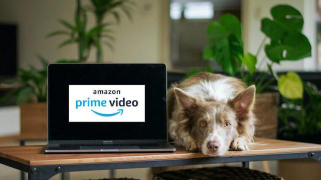 Amazonプライムビデオの絶対ハマるイギリスのドラマ6選【2020最新】