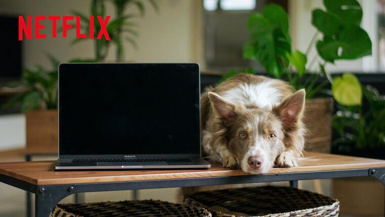 【2020最新】Netflixの絶対ハマるイギリスのドラマ11選